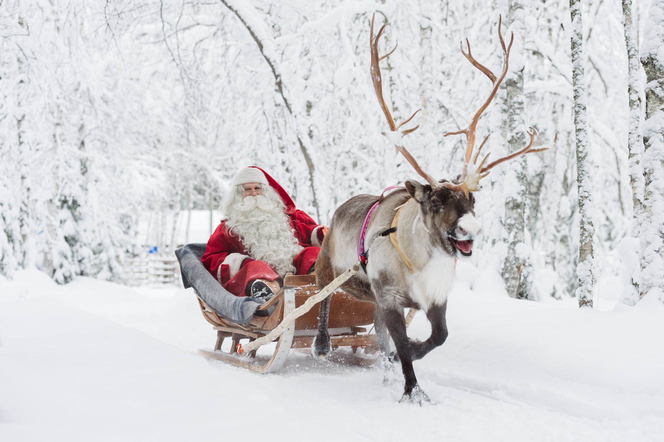 Santa Claus on a sleigh, reindeer and a snowy landscape.