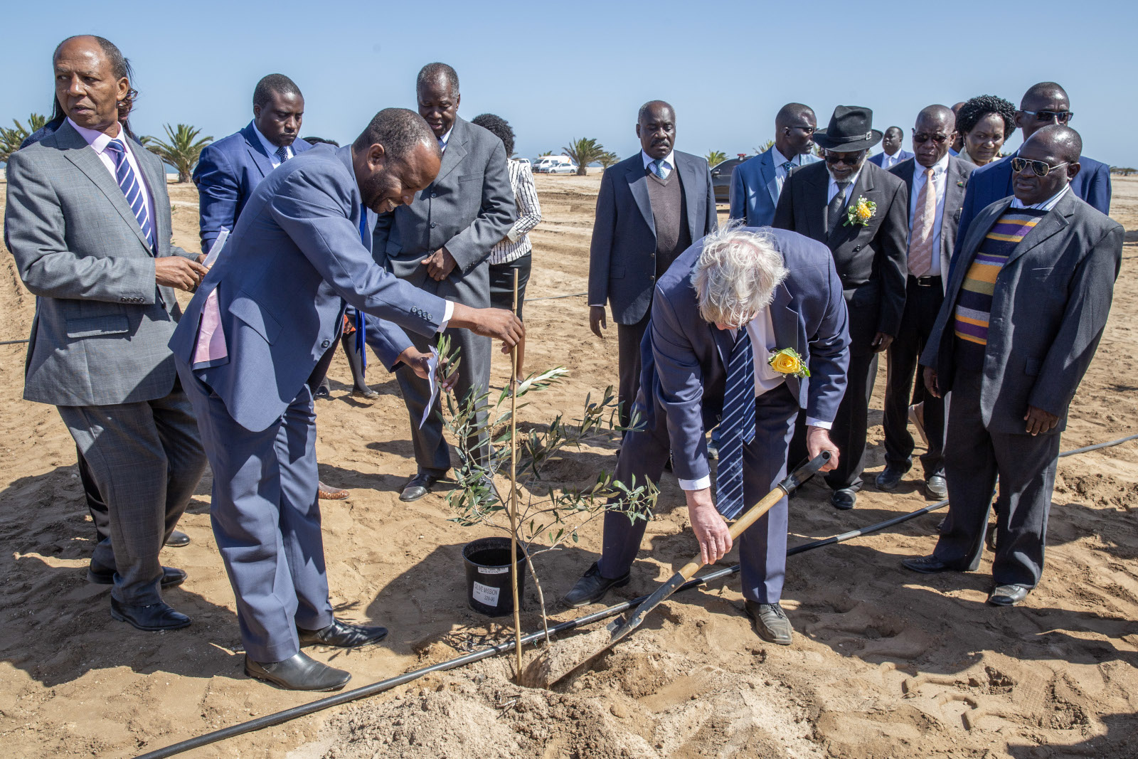 The key figures of the Carbon Garden project planting a tree wearing suits. Present are also Namibia's former president Sam Nujoma and Minister of Higher Education Itah Kandjii-Murangi.
